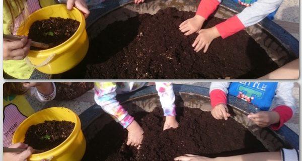 2-soil2