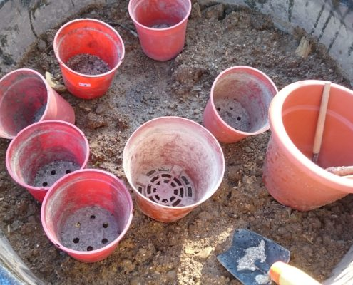 Soil and tools. Keep simple makes children's imagination bigger.